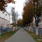аллея на Комсомольской (2011 год)