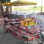 велоэкипаж в Гомеле