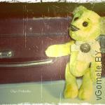 мишка Тедди  (по имени Мартин)