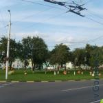 сад на улице Барыкина