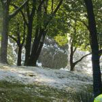 лето среди зимы в Сочи