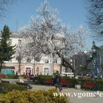 недалеко от площади Ленина в Гомеле