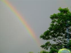 радуга приблизительно в 20.00 15 июня 2012 года